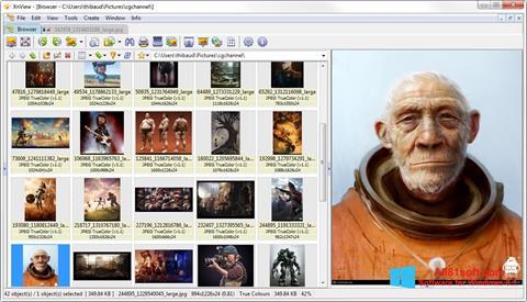 Ảnh chụp màn hình XnView cho Windows 8.1
