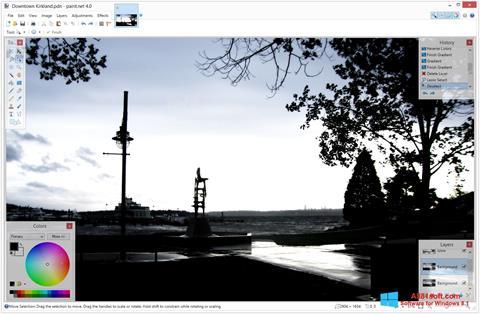 Ảnh chụp màn hình Paint.NET cho Windows 8.1