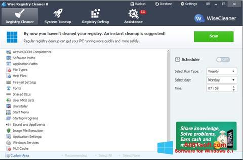 Ảnh chụp màn hình Wise Registry Cleaner cho Windows 8.1