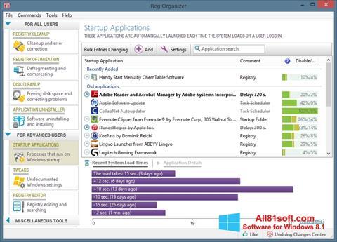 Ảnh chụp màn hình Reg Organizer cho Windows 8.1