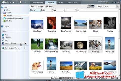 Ảnh chụp màn hình RealPlayer cho Windows 8.1